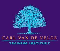 Life coaching, Verkoopscoaching, Team coaching, Executive coaching, Business coaching - Carl Van de Velde Training Instituut